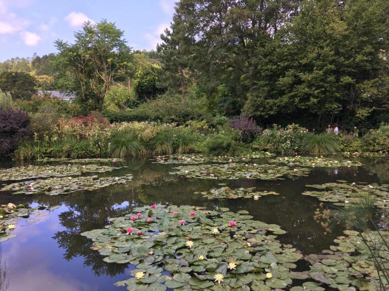 Giverny waterlily pond